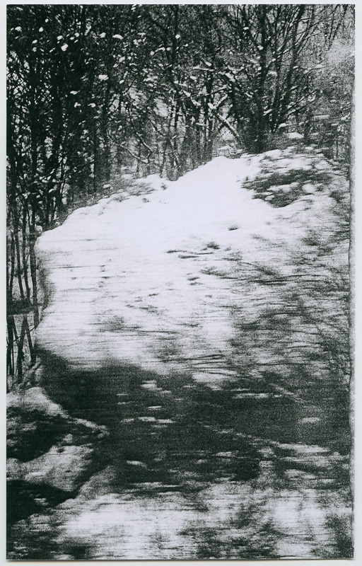 8-gilles-picarel-affleurement-train-paysage-l-etrat