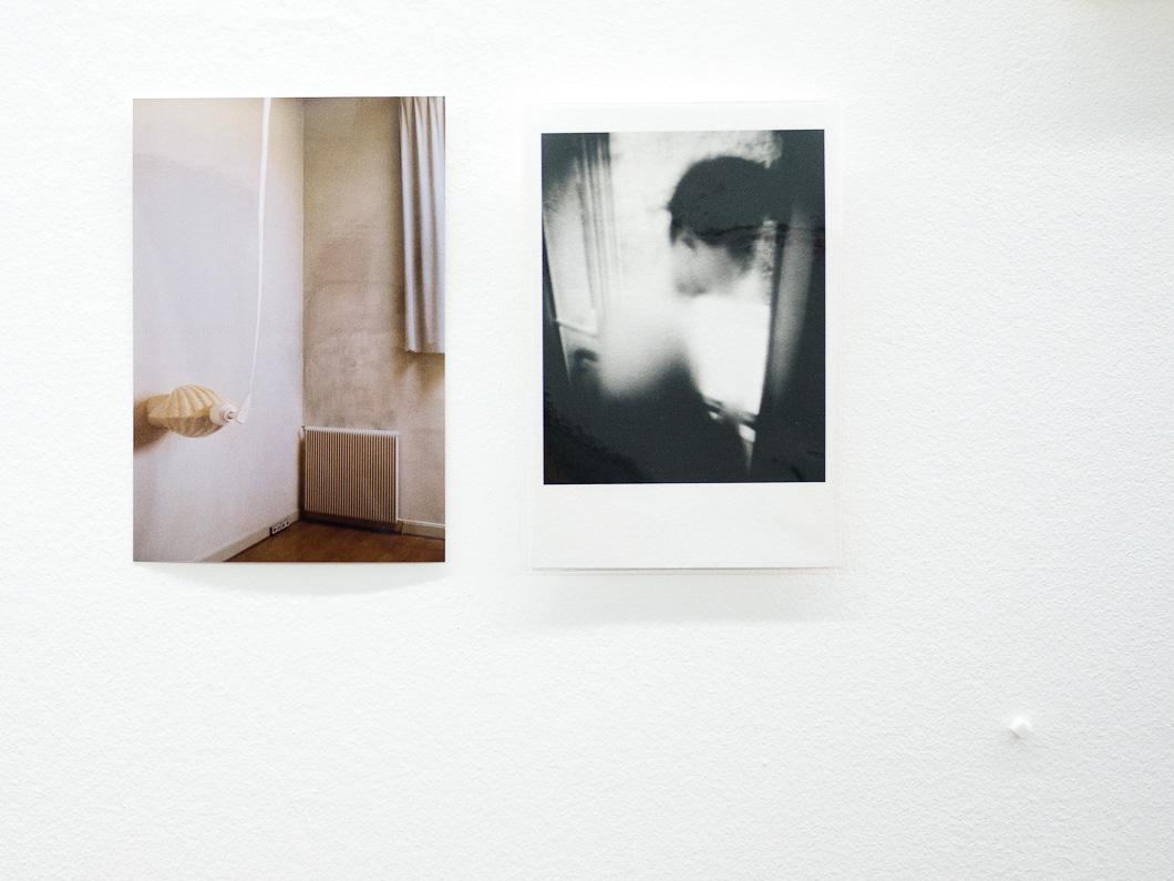 Exposition de photos de Gilles Picarel dans le cadre de l'opération Art protects organisée par la galerie Yvon Lambert et Aides en 2011