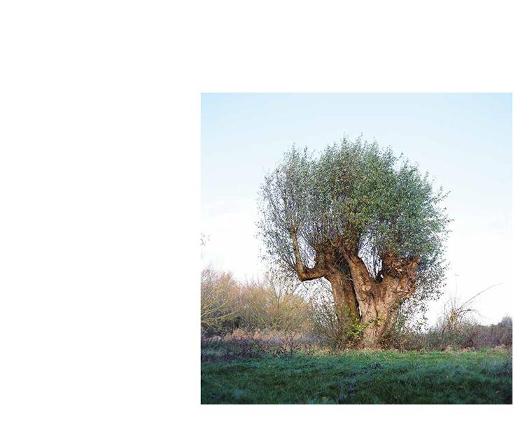 gilles-picarel-residant-8