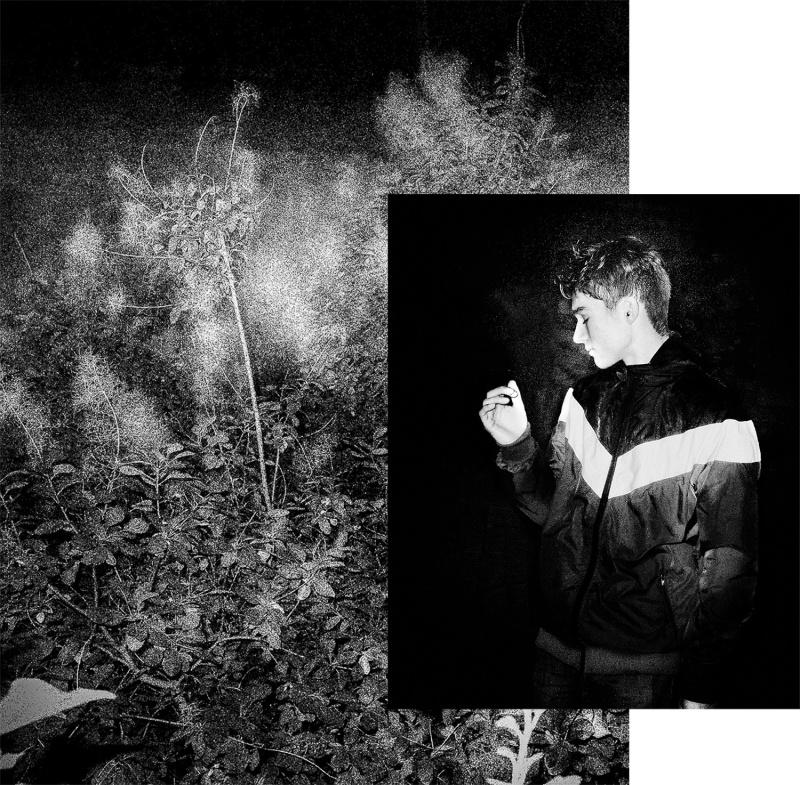 gilles picarel portraits de nuit
